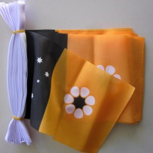 Northern Teritory flag bunting