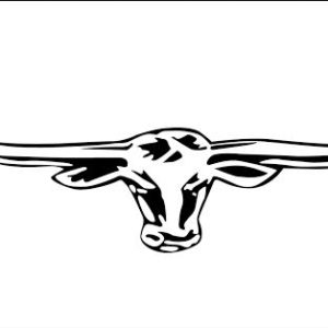 Longhorns Rodeo Flag